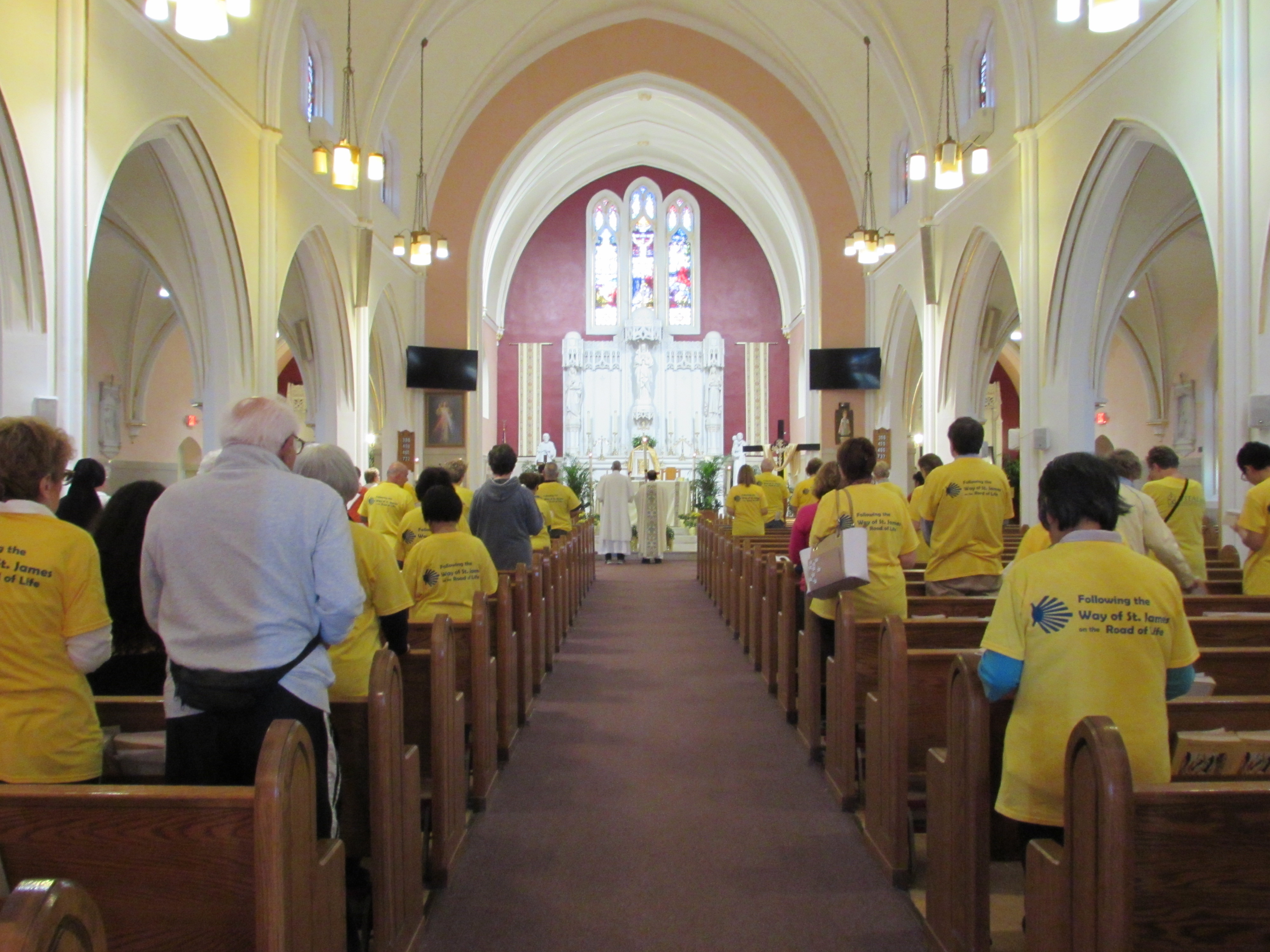 FOLLOWING THE WAY OF ST  JAMES – Vitality